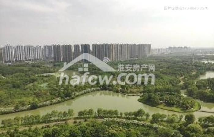 星雨華府景觀樓俯瞰森林公園圖片